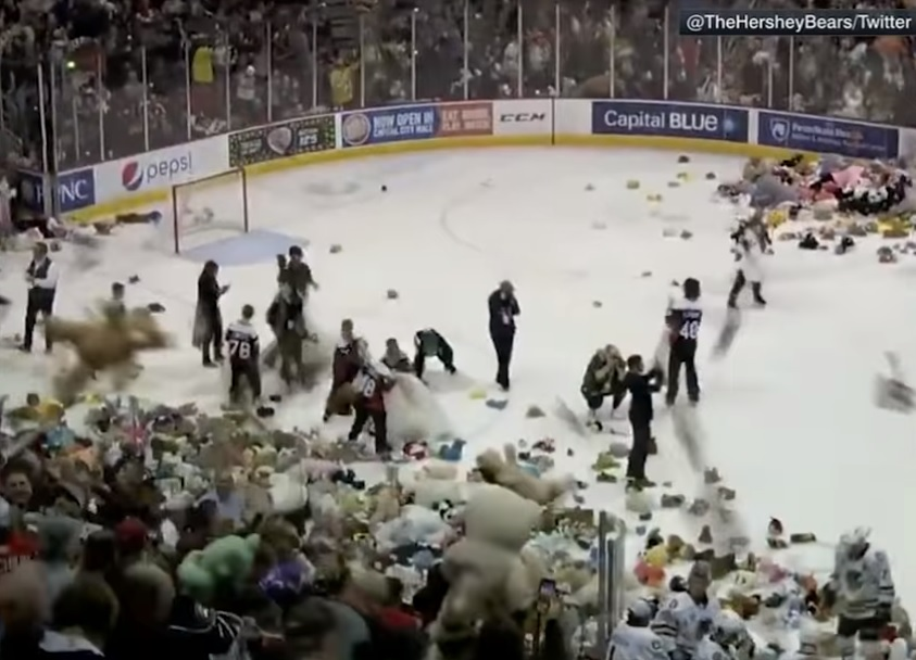 Teddy Bear Toss world record for charity