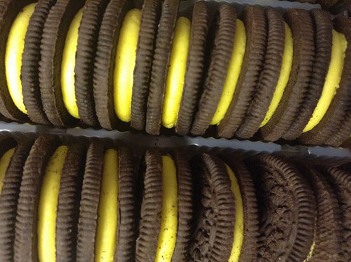 Which New Oreo Flavor Do You Think Is Best?