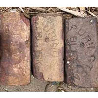 Appleton museum selling historic bricks
