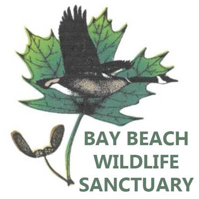 Bay Beach Wildlife Sanctuary expanding