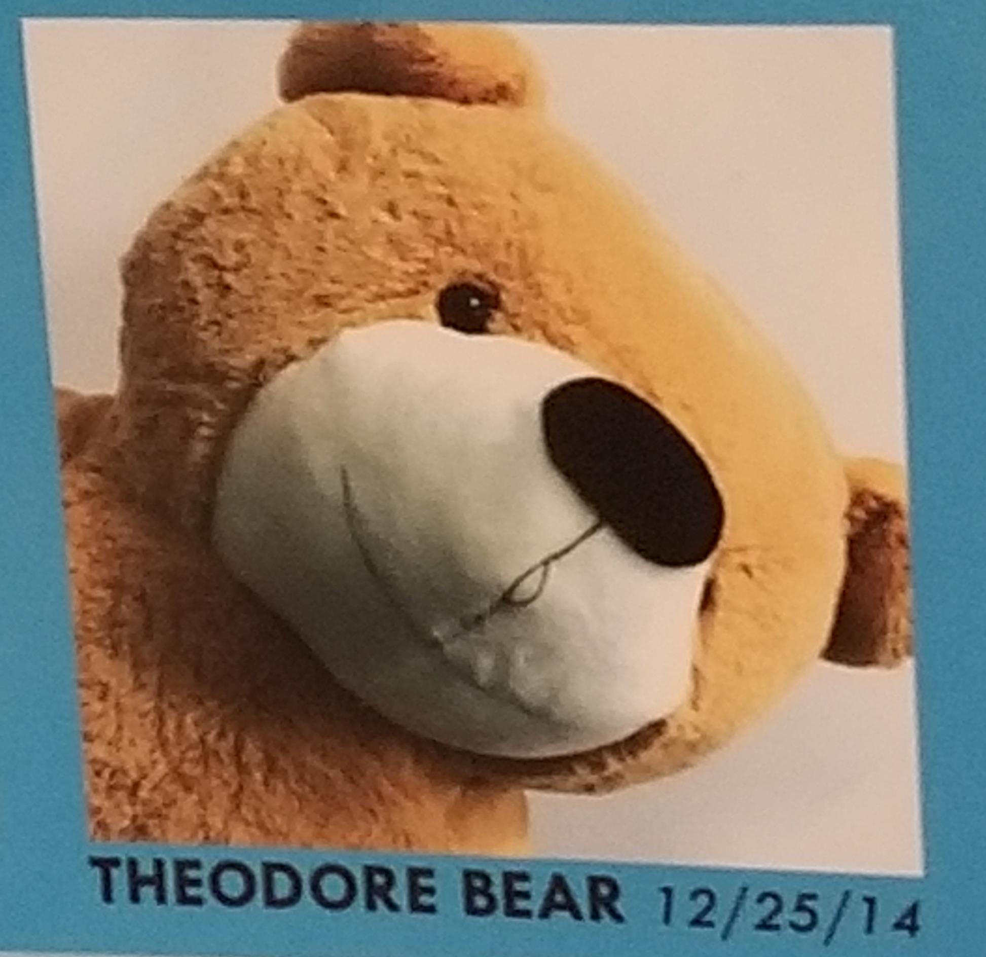 #WhattheChuckWednesday - Theodore Bear