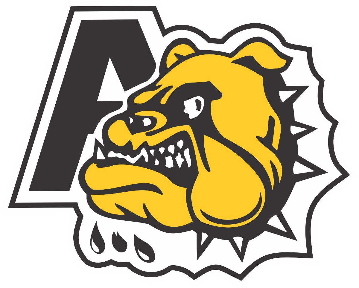 2018 Midget AA hockey provincial results (from Antigonish Friday)