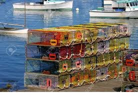 Lobster fishers say they're optimistic as season winds down