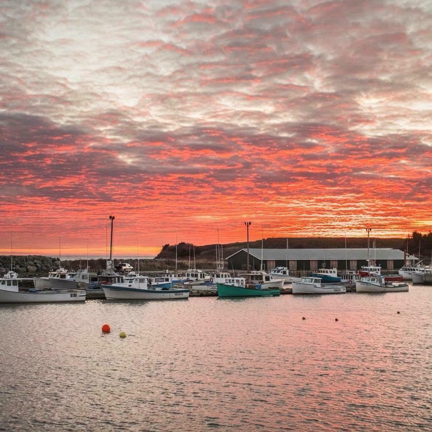 BREAKING: Fisherman dies off Port Hood