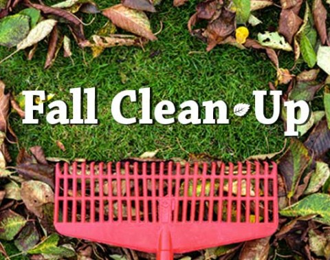 Inverness councillors approve fall clean up week
