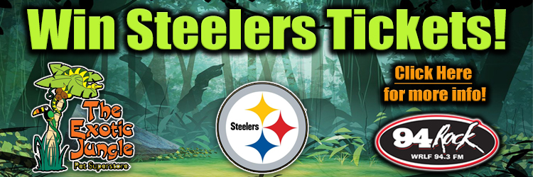 Feature: https://www.wrlf.com/exotic-jungle-win-steelers-tickets/