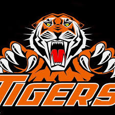 Hopkinsville High's boys hoopsters win, Lady Tigers lose