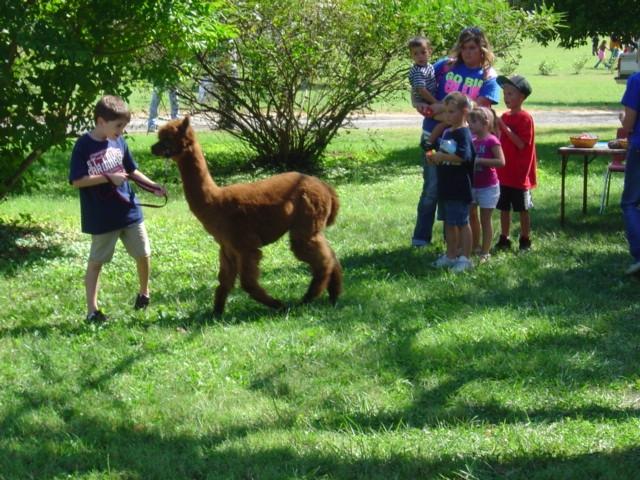 NatureFest at Jeffer's Bend Saturday
