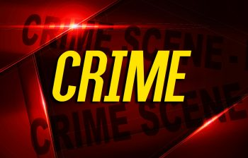 Guns, knives stolen in Elkton burglary