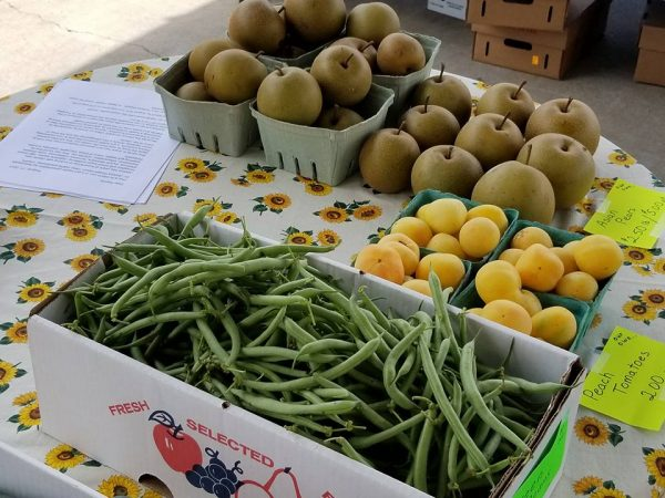 Downtown Farmers Market opens Saturday