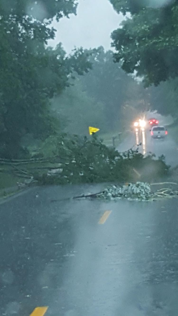 Some damage reported after severe storms move through