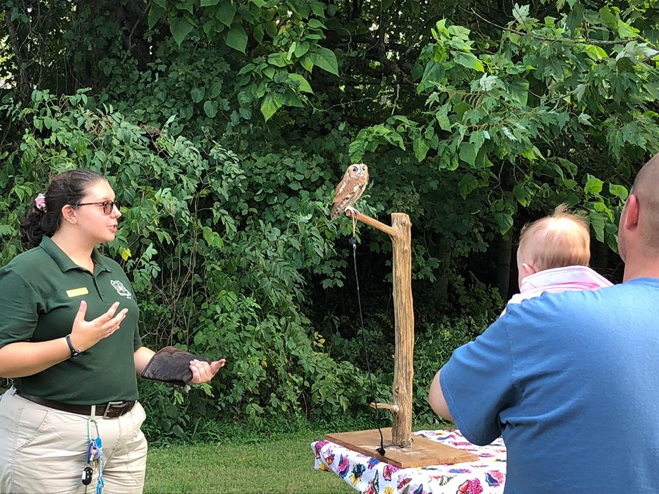 NatureFest draws in large crowds