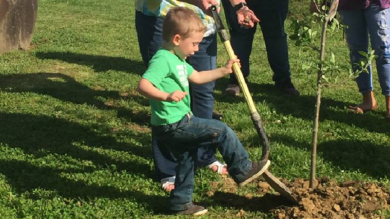 Arbor Day Celebrated In Paintsville Wsip Fm 98 9 New Country