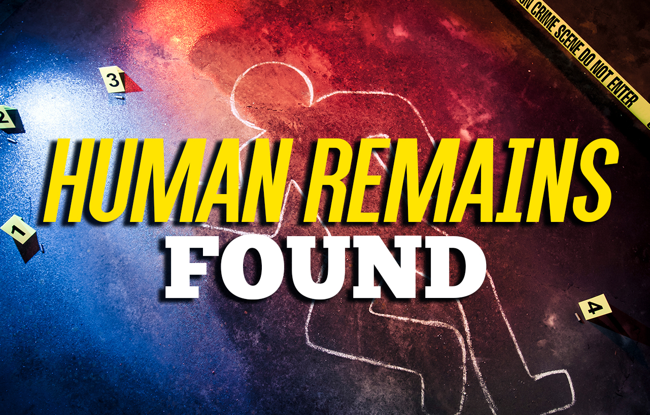 Possible Human Remains Found in Carter Co