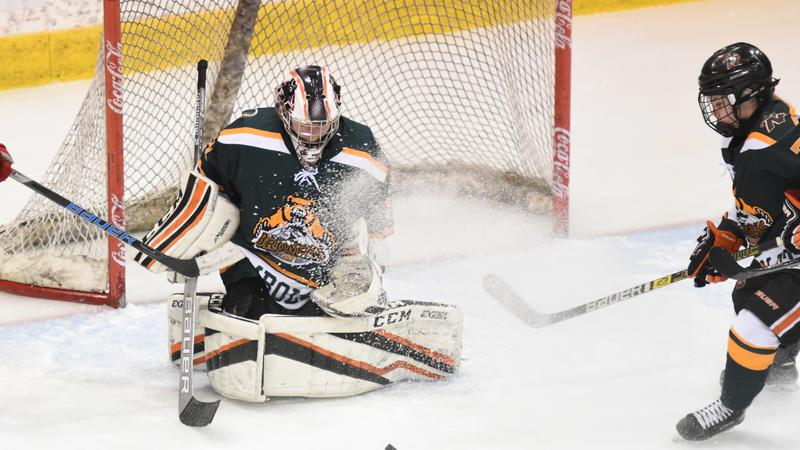 Paow News: Hounds Take Game 1 Over Bears