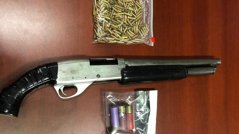PAPS and RCMP seize drugs and shotgun