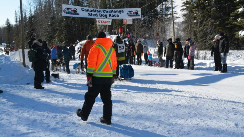Canadian Challenge Sled Dog Race begins