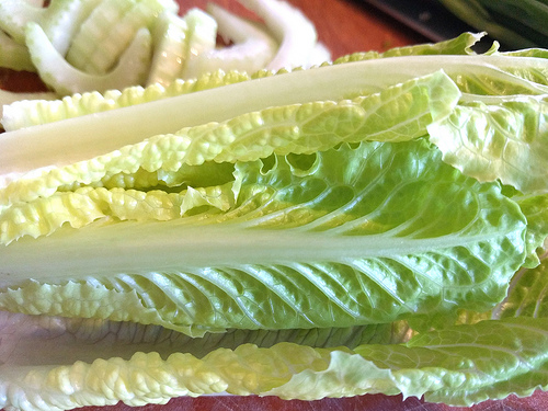ANOTHER E.COLI OUTBREAK FROM ROMAINE LETTUCE!!