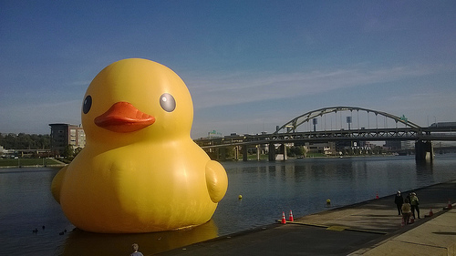 Inflatable Duck Makes A Run For It!
