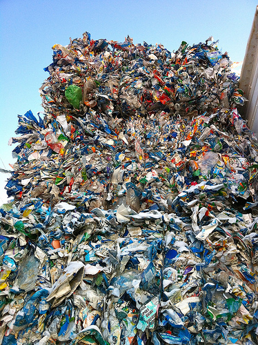 Scientists Created an Enzyme That Eats Plastic, and It Could Be Huge for Fighting Pollution