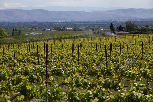 The Safest City in the Yakima Valley