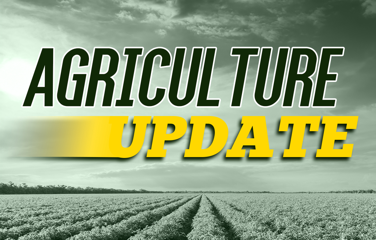 USDA WEEKLY CROP REPORT