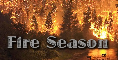 Forest Fire Season Is Here