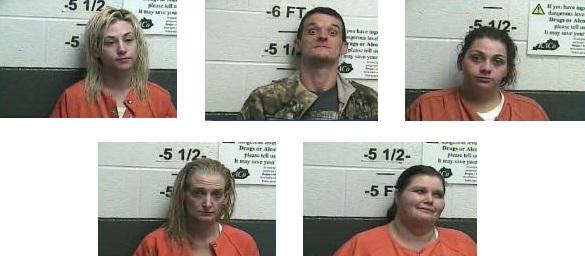 Williamsburg Police Arrest 5 After Drugs Are Found In Children's Bedroom