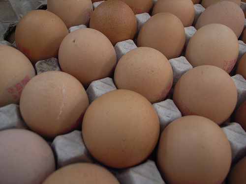 There's a Trick to Finding the Freshest Eggs at the Grocery Store