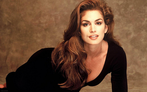 Best Part of the Big Game???  The Commercials and Cindy Crawford's Return!