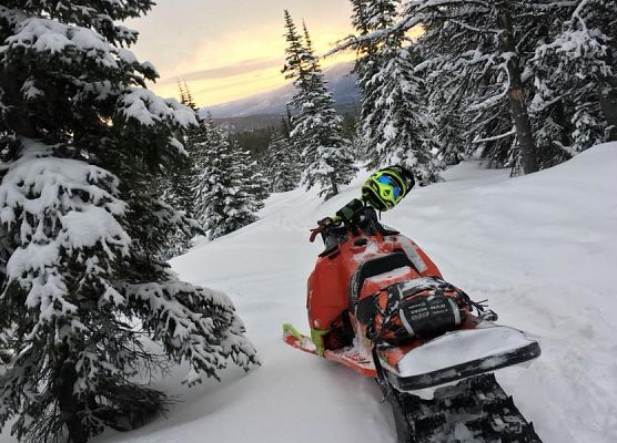 A Lumby man has died in a snowmobile accident