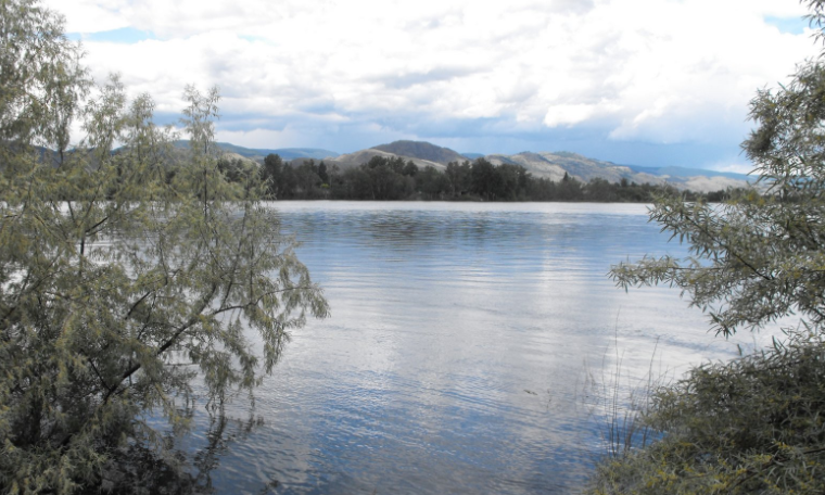 Thompson Rivers steadily rising in Kamloops