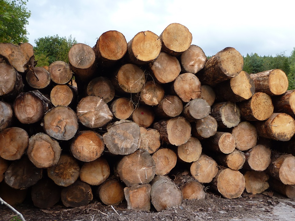 With a booming lumber market, the viability of many Kamloops area sawmills is no longer in question