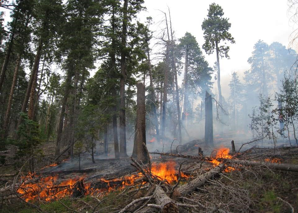 Prescribed burn in the Hat Creek area starting today