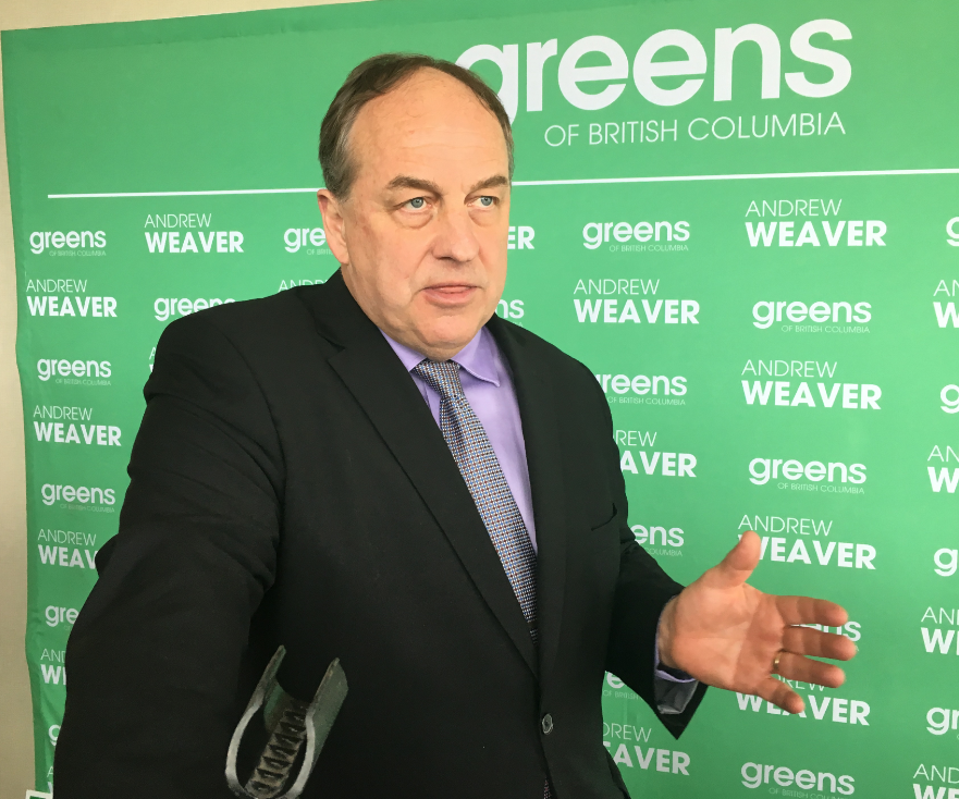 Green Party leader says the party is targeting a Kamloops riding