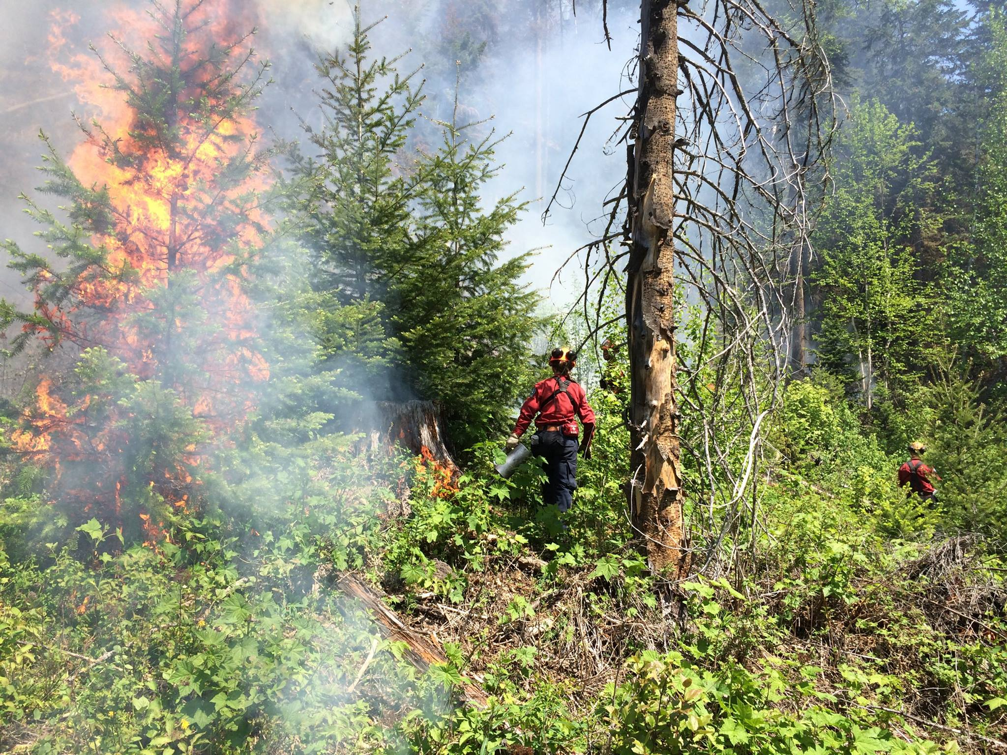 B.C Wildfire Service crews ready to act if Xusum Creek blaze burning gets any worse