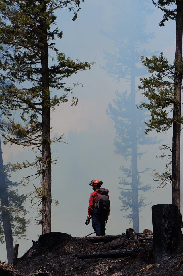 B.C Wildfire Service tackling multiple new fire starts, with no growth expected for Kamloops Shuswap Road fire