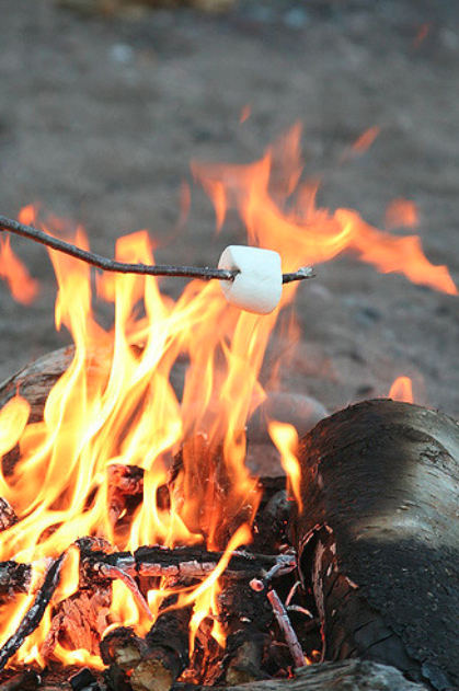 Effective at noon today, a campfire ban will be in place throughout the Kamloops Fire Centre