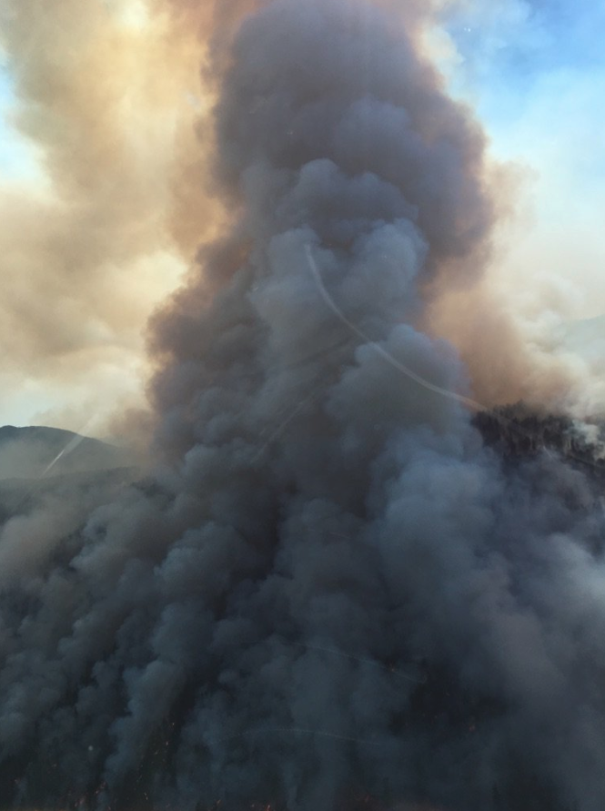 B.C. is asking for federal government help to fight wildfires