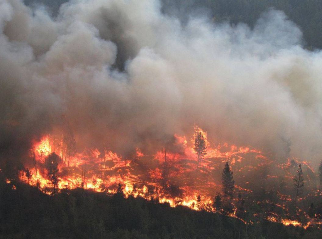 B.C now in the worst wildfire season ever in terms of hectares burned