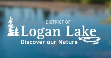 Logan Lake Election Results