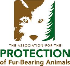Renewed calls for legislation on hunting traps after Kamloops man loses dog