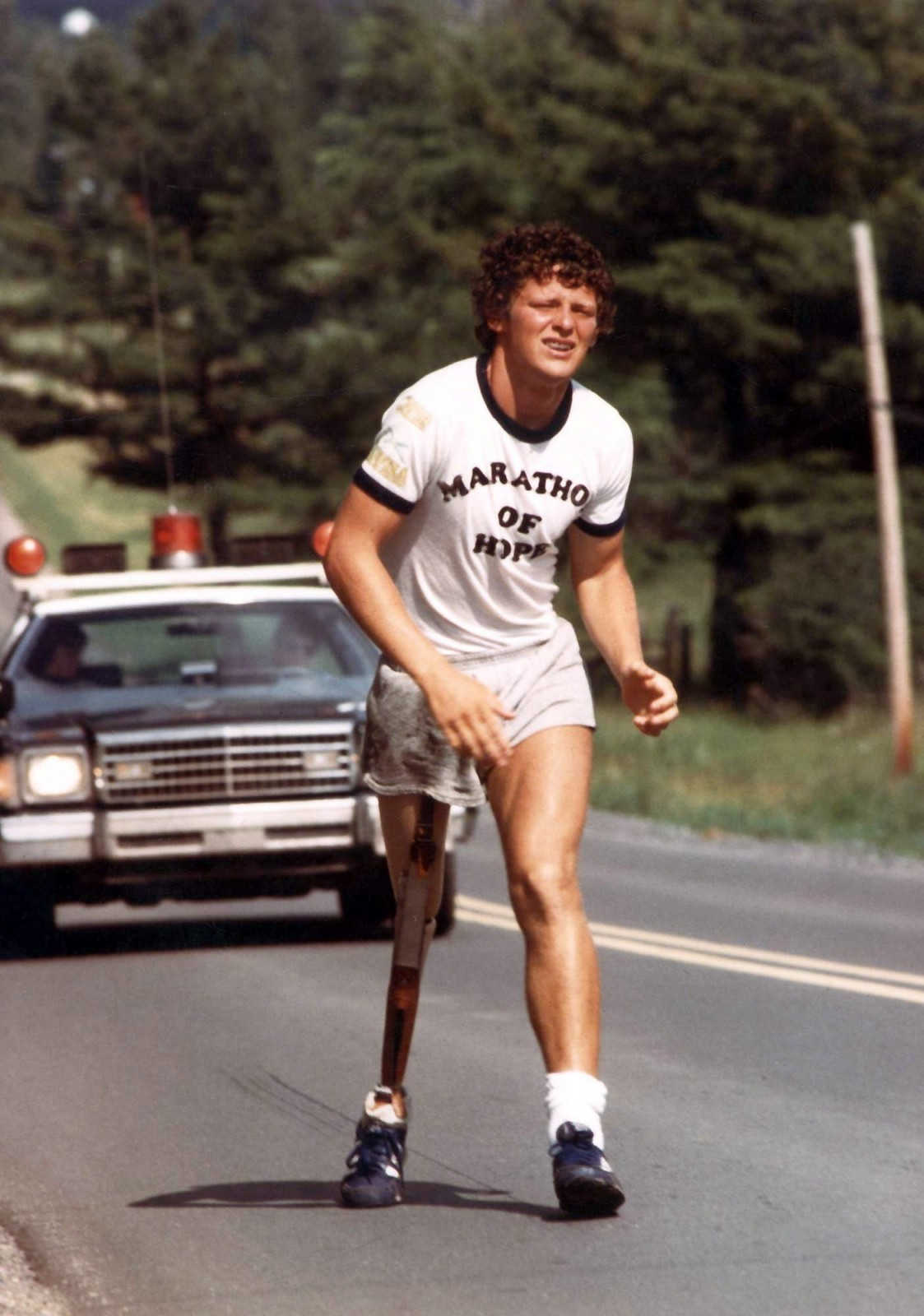 The Terry Fox Movie