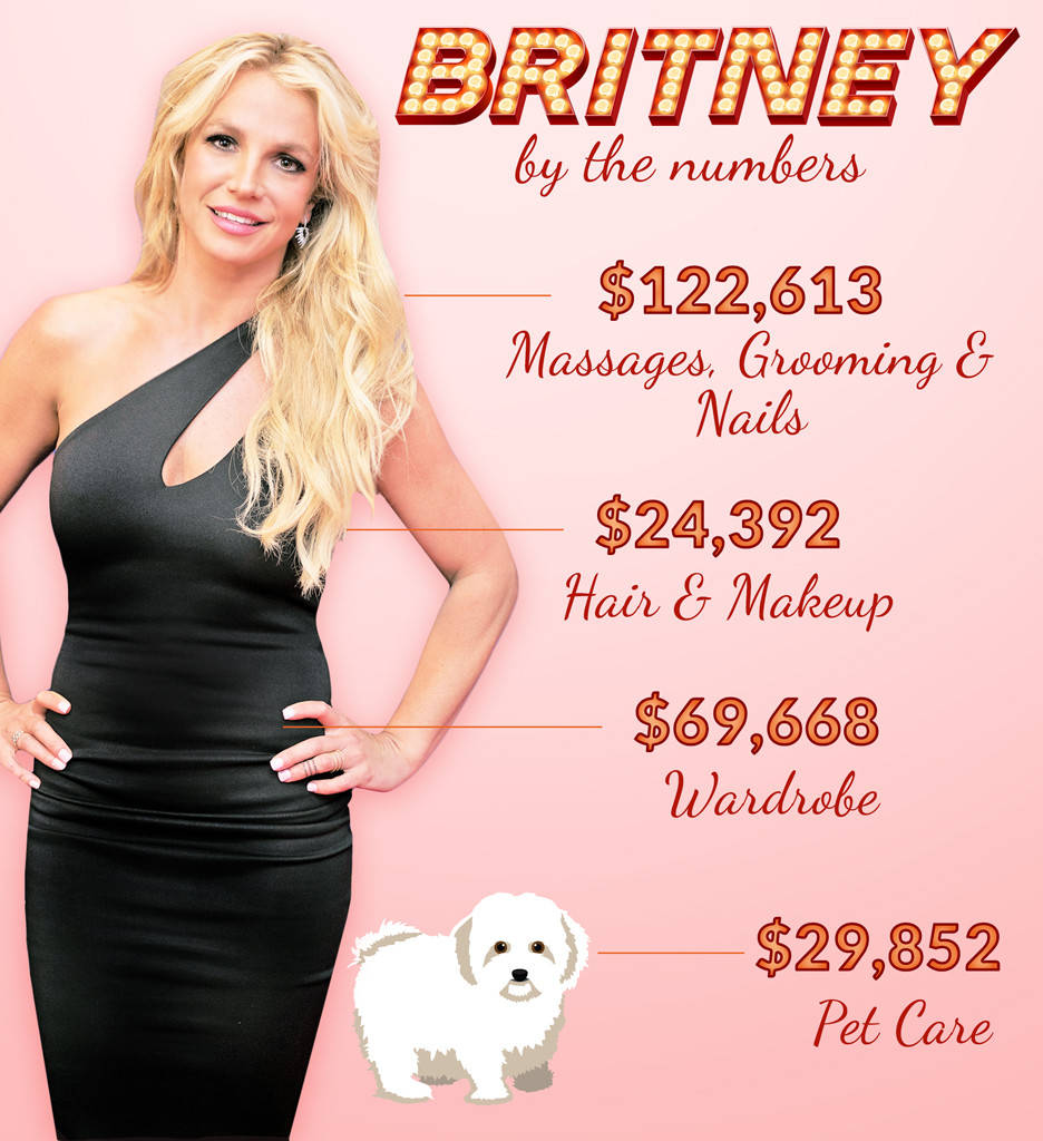 Britney spends $29,852 on her dog!