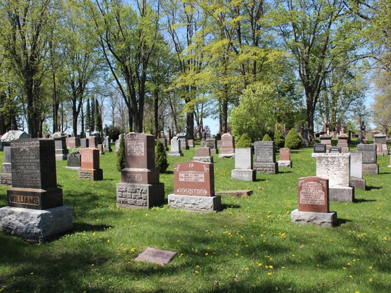 Grave Markers Knocked Over at Woodlawn Cemetery