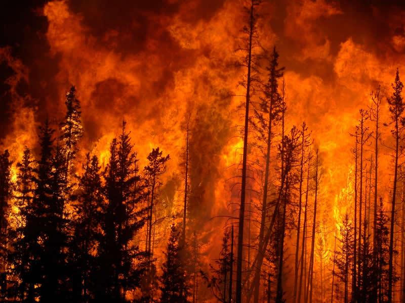Southend Evacuates Because of Smoke And Wildfire