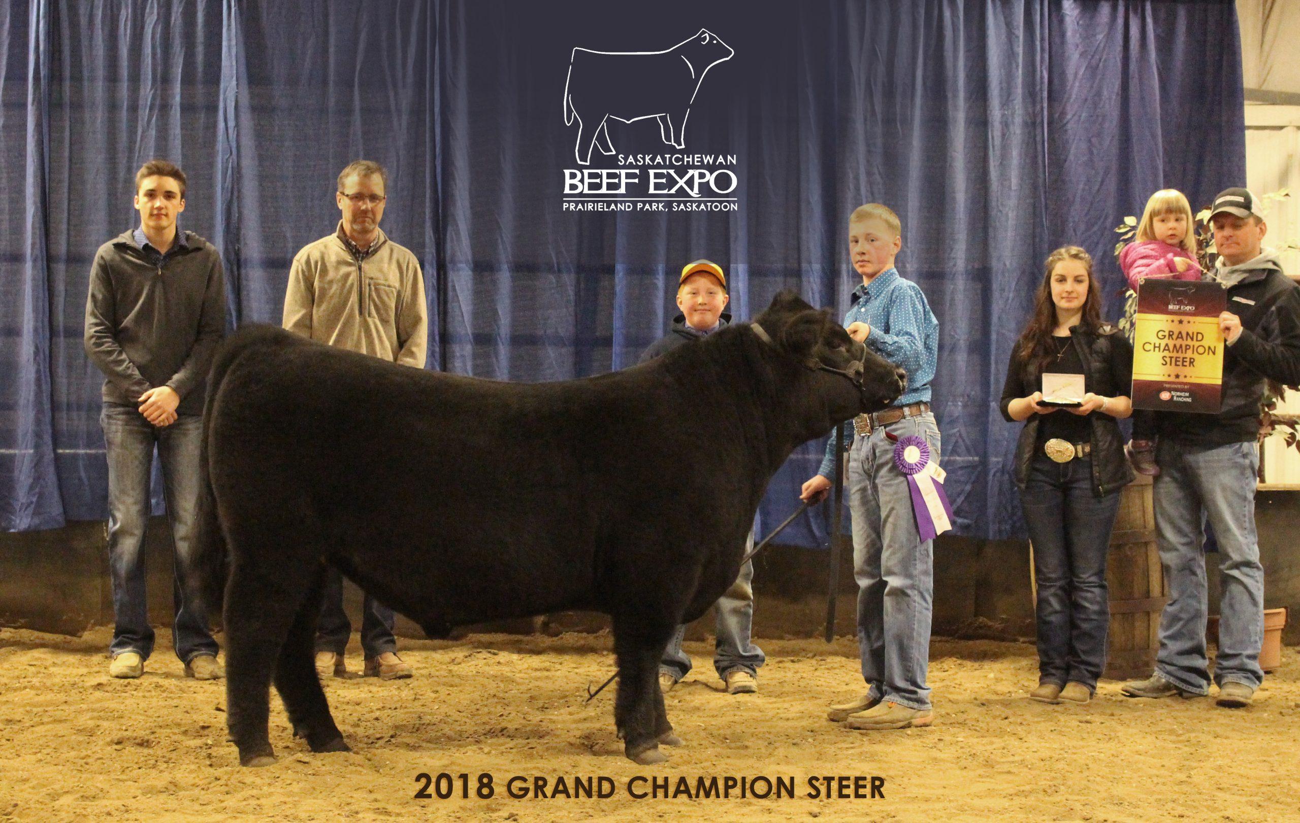 Saskatchewan Beef Expo Results