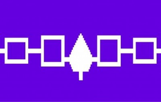 Rush to Fly Iroquois Nation Flag at Future N-L-L Home Games