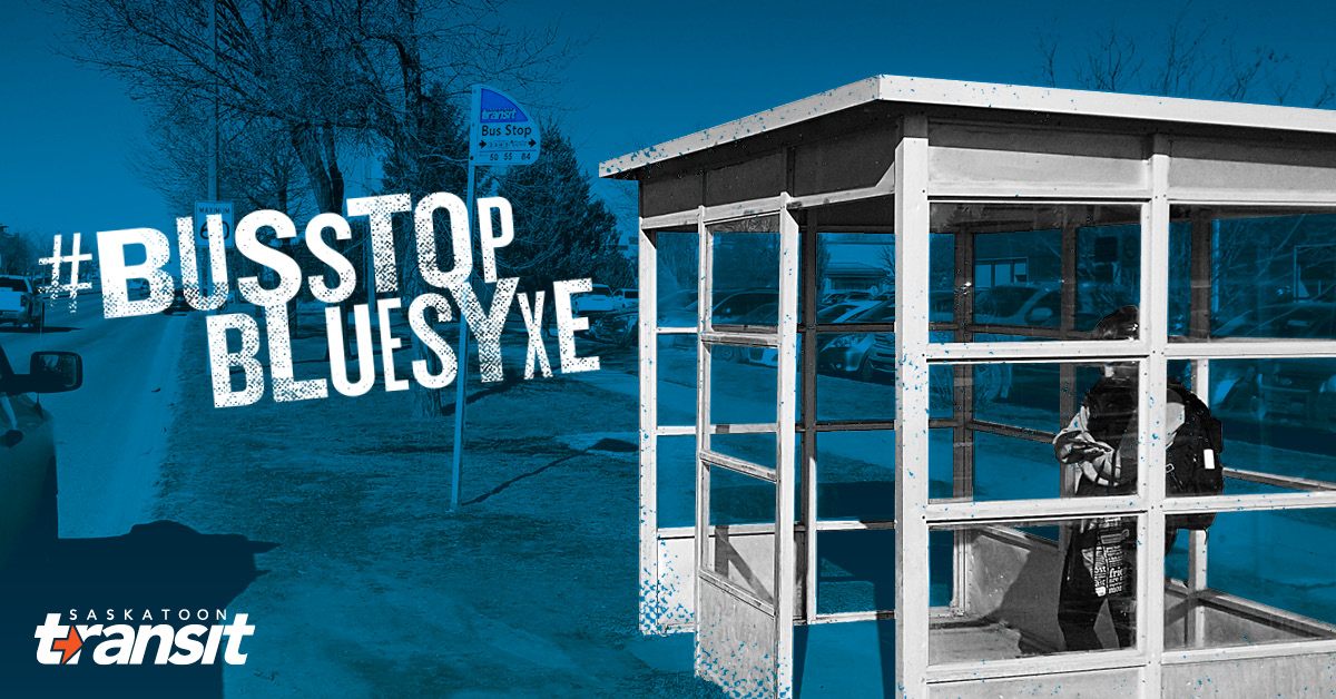 Looking For Input On Bus Stop Improvements