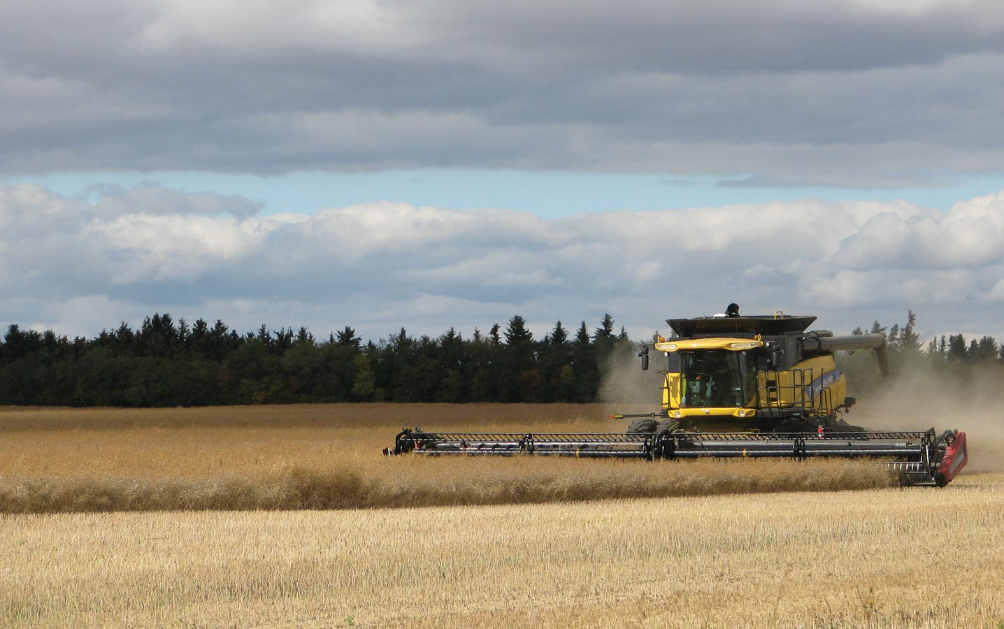 Harvest Most Advanced in the Southwest